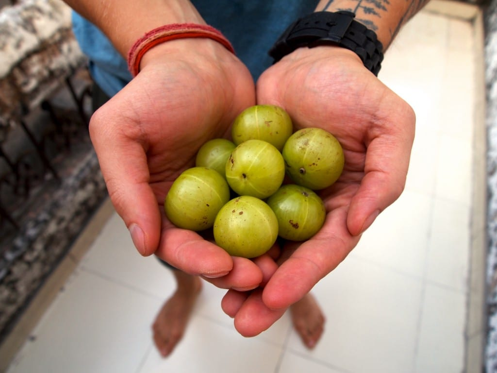 tuore amla superfood